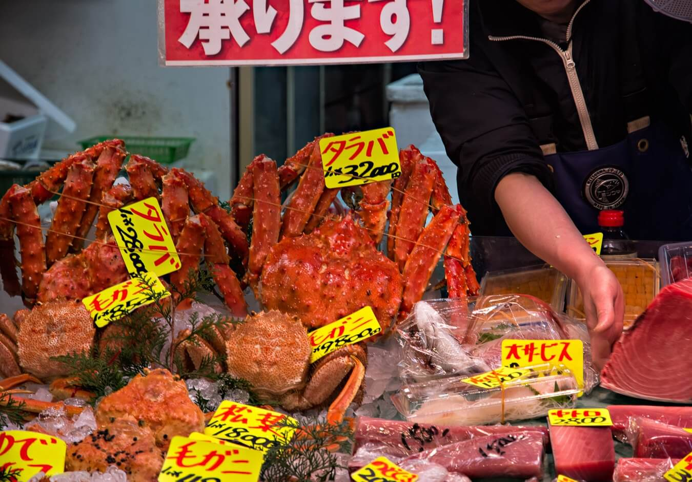 Fish Market, Tokyo, Japan - Photo by Zed Sindelar of CuriousZed Photography