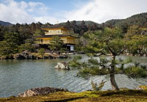 Kinkaku-ji, Golden Pavilion, Kyoto, Japan - Photo by Zed Sindelar of CuriousZed Photography