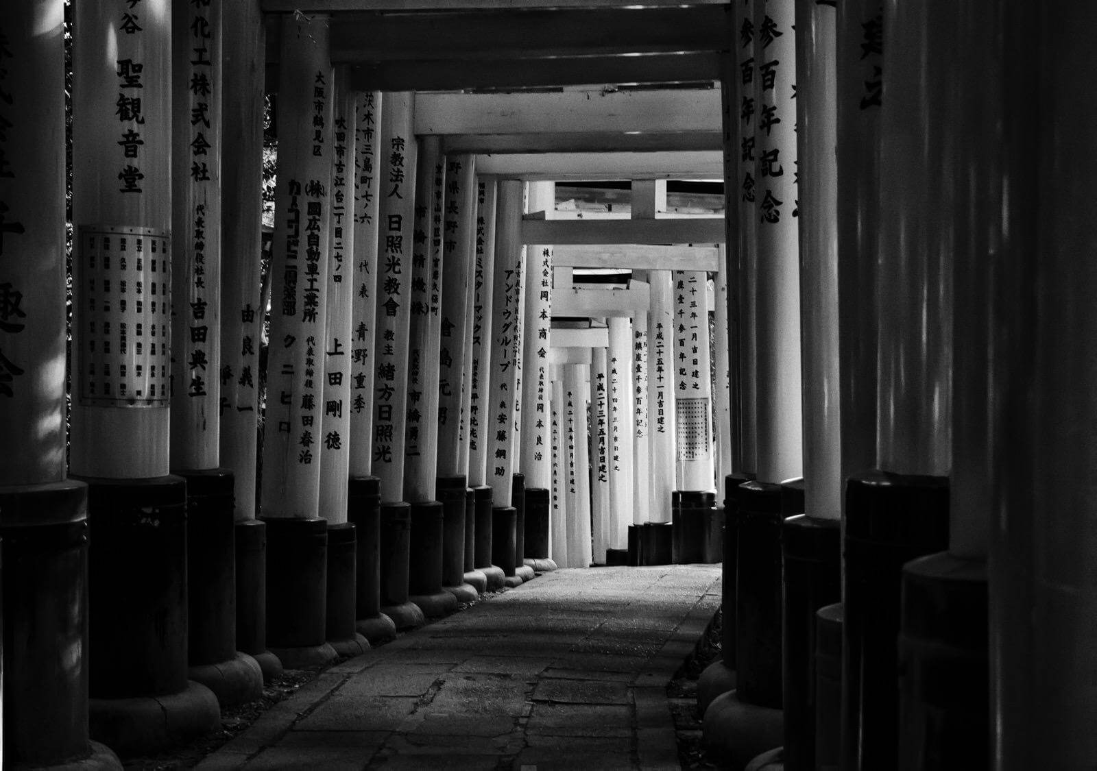 Torii gates at Fushimi Inari Shrine - Photo by Zdenek Sindelar of CuriousZed Photography