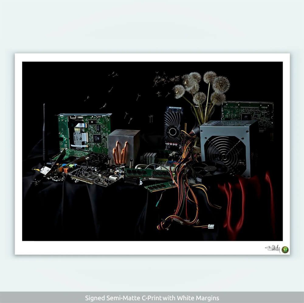 Desolation-C-Print-with-COA-CuriousZed