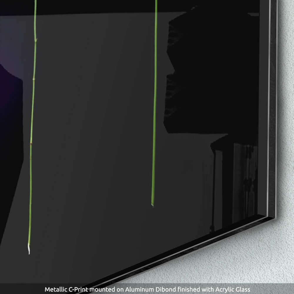 Quattro-Detail-of-Metallic-C-Print-Dibond-Acrylic-Glass-CuriousZed